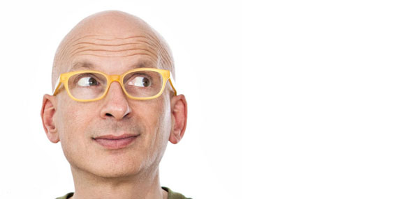 seth godin - genius and breaker of things